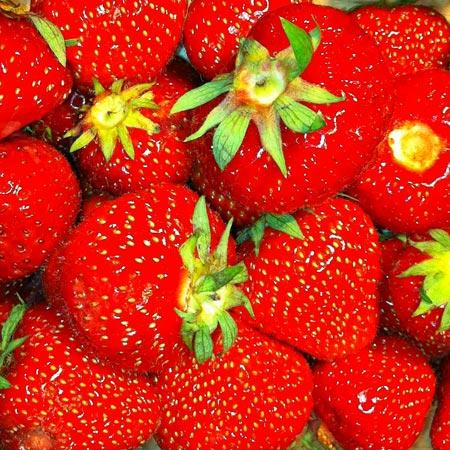 Wieviel Kalorien hat Erdbeeren